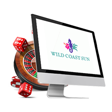 Wild Coast Sun Review